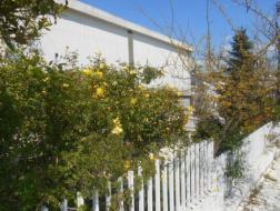 Apartment Rent Agia Kyriaki