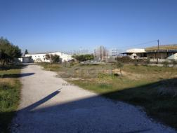 Land Sale Patras-462135