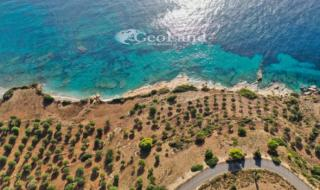 Sale Land Kouzounas, 462460